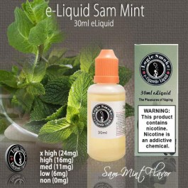 LogicSmoke 30ml Sam Mint e Liquid